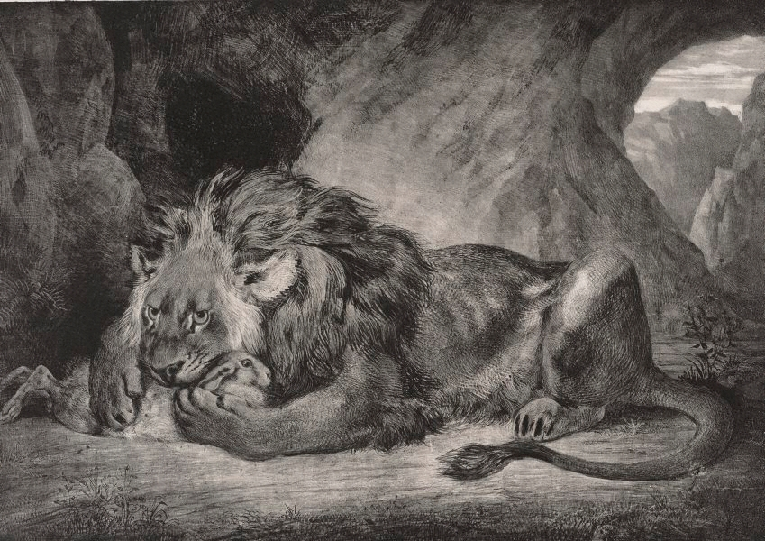 Delacroix Eugène | Studies of a cat and two lions, with ...