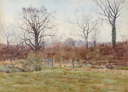 An image of Bromham Park by A Anderson