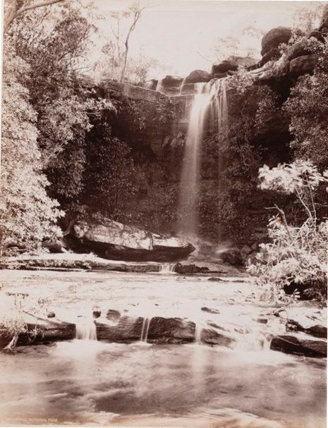 An image of Waterfall, National Park by Unknown, NSW Government Printer