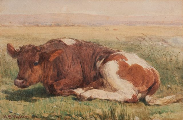 An image of Study of a calf