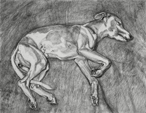An image of Eli by Lucian Freud