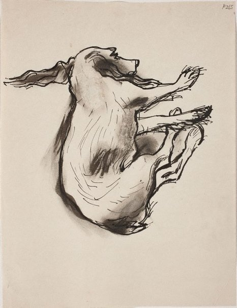 An image of (Study of sleeping dog) (Late Sydney Period) by William Dobell