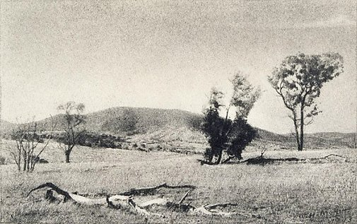 An image of Landscape, Tarana by W.H. Moffitt