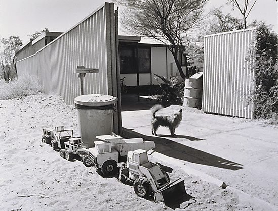 An image of Dogs and trucks, married quarters, Mt Gunson