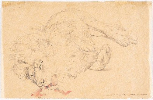 An image of Tracing of study of dead lion for 'David's first victory' by William Strutt