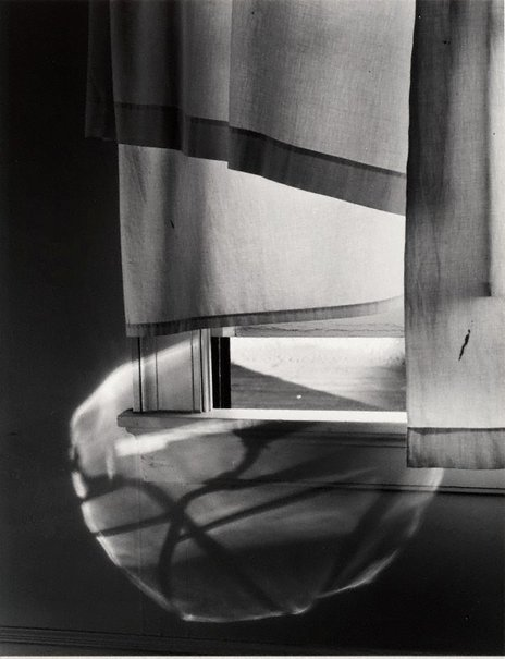 An image of Windowsill daydreaming, Rochester, New York, July 1958 by Minor White