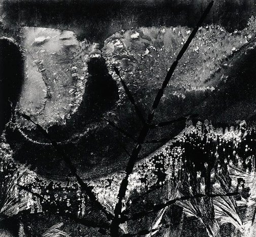 An image of Ritual branch, frost on window, December 8, 1958 by Minor White