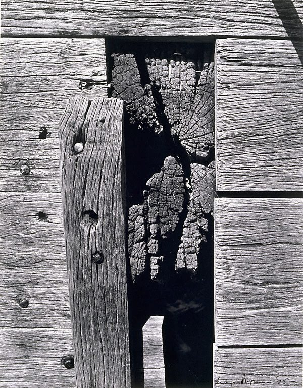 An image of Planks and joinery, Bay Street Wharf