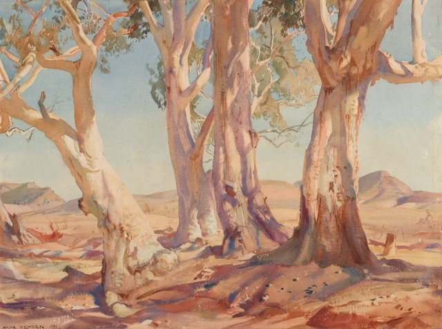An image of Red gums of the far north