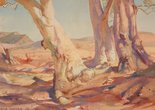 Alternate image of Red gums of the far north by Hans Heysen