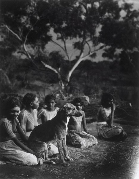 An image of Aboriginal group with dog by Laurence Le Guay