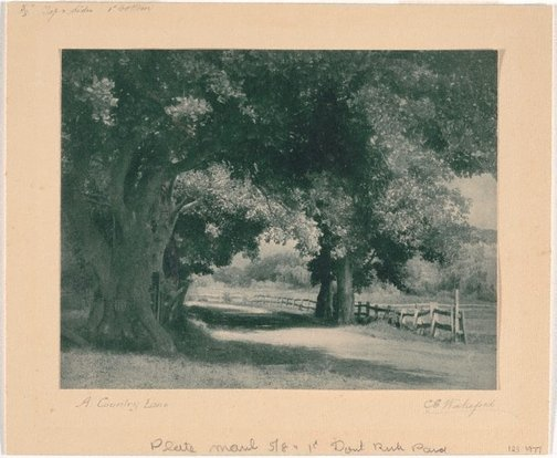 An image of A country lane by Charles E Wakeford
