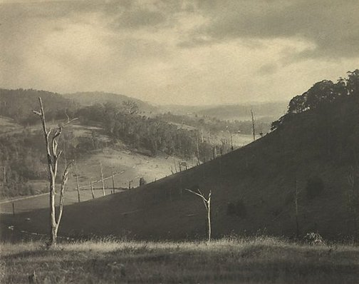 An image of Autumn light by Harold Cazneaux
