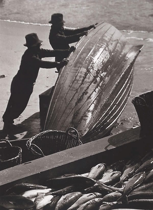 An image of Palm Beach salmon fishers