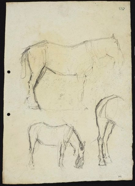 An image of recto: Three horse studies verso: Horse with nosebag and Horse (head unfinished) by Lloyd Rees