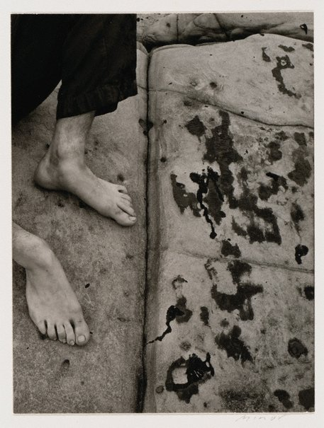 An image of Untitled (Tim Asch at Lobos) by Minor White