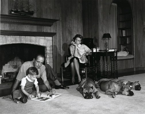 An image of Humphrey Bogart, Lauren Bacall, and their son Stephen in the living room of their Los Angeles home with their three snoozing pet boxers, Harvey, George and Baby by Sid Avery
