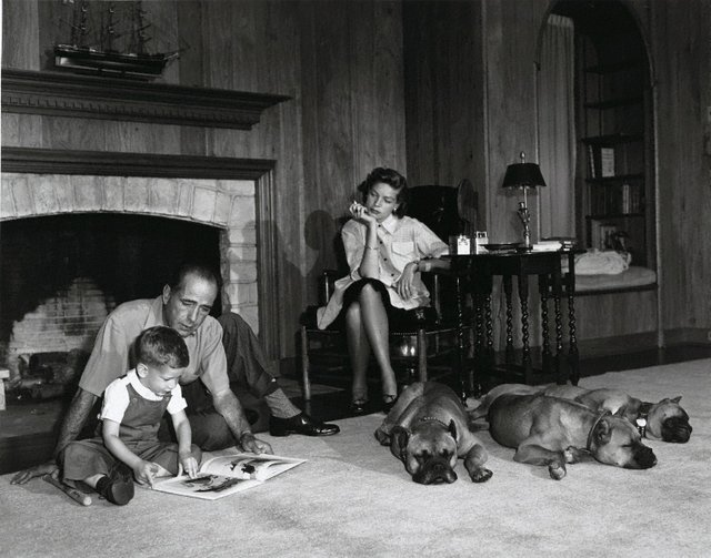 An image of Humphrey Bogart, Lauren Bacall, and their son Stephen in the living room of their Los Angeles home with their three snoozing pet boxers, Harvey, George and Baby