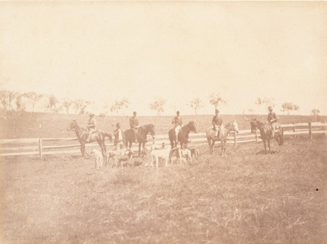An image of Men on horseback with dogs
