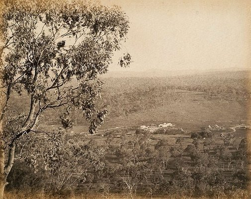 An image of Homestead in distance by Charles Bayliss
