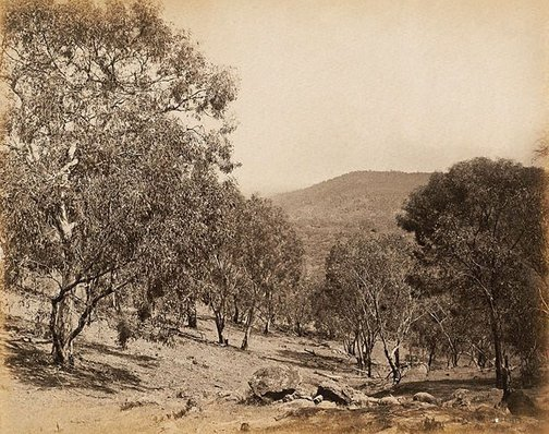 An image of View of hillside and ridge in background by Charles Bayliss