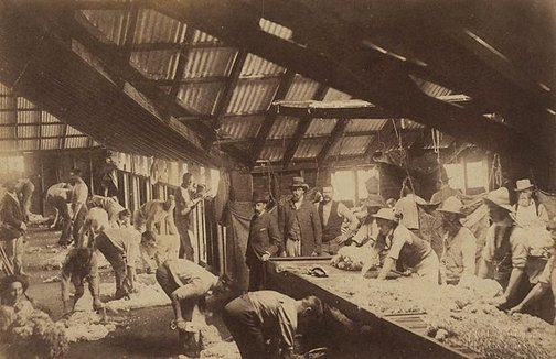 An image of Shearing shed by Charles Bayliss