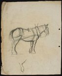 Alternate image of recto: Cart horse verso: Horse and dray by Lloyd Rees