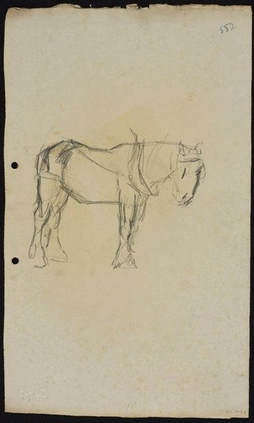 An image of recto: Two work horses verso: Work horse by Lloyd Rees