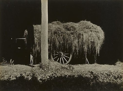 An image of Load of Lucerne by Keast Burke