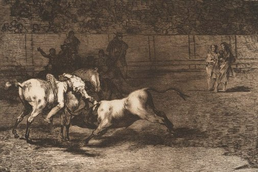 An image of Mariano Ceballas, alias the Indian, kills the bull from his horse by Francisco de Goya Y Lucientes