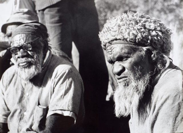 An image of Elders, Amata