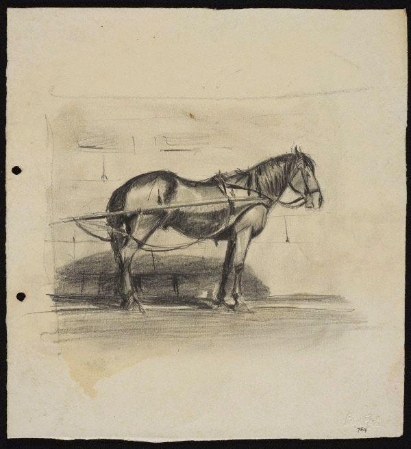 Cab horse