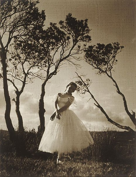 An image of Sylphides by Laurence Le Guay