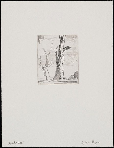 An image of Tree studies by Nora Heysen