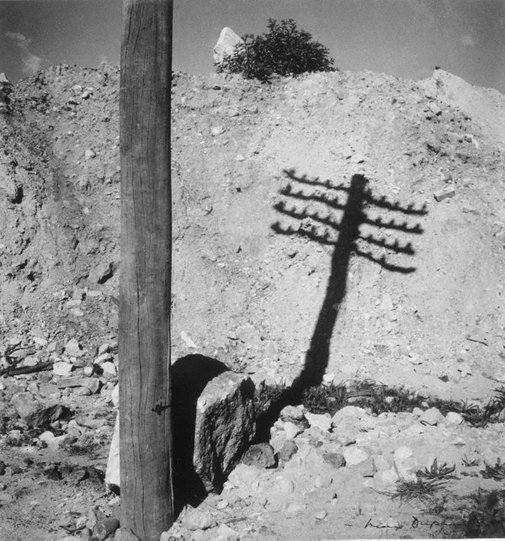 An image of The post by Max Dupain