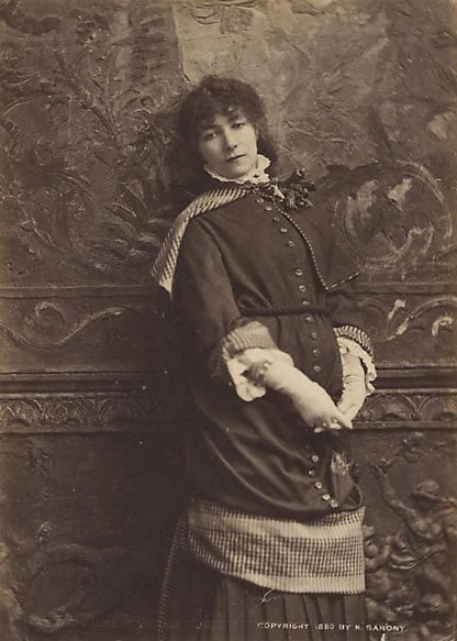 An image of Untitled (portrait of Sarah Bernhardt, New York) by Napoleon Sarony