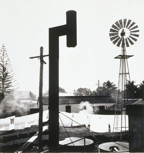 An image of Backyard, Forster by Max Dupain