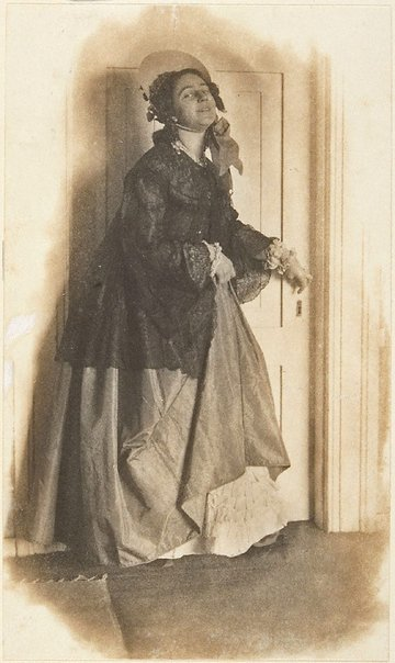 An image of Illustration for 'Trelawney' by C Yarnall Abbott