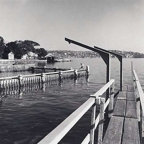 An image of Vaucluse waterfront by David Moore