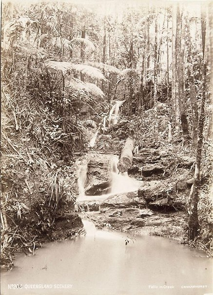 An image of A creek scene by Unknown