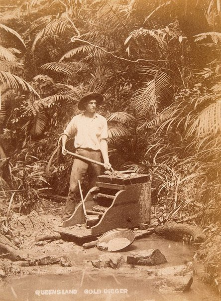An image of Gold digging near Cairns by Unknown