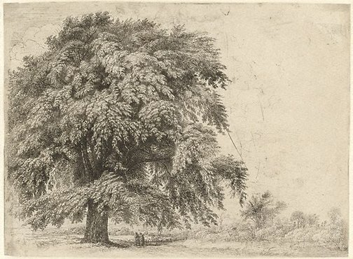 An image of The tree by John Glover