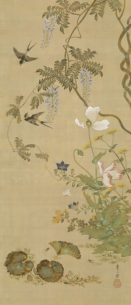 An image of Birds and flowers by Kiitsu Suzuki