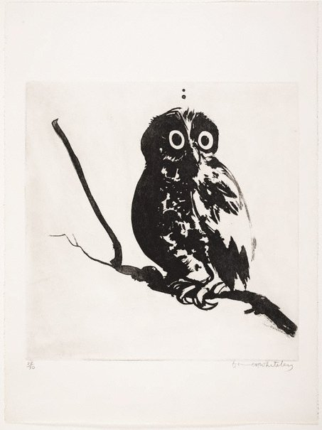 An image of Startled (owl) by Brett Whiteley