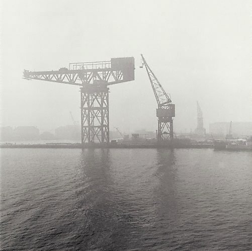 An image of Cranes in fog, Garden Island by David Moore