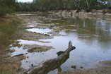 An image of 5. Near the Murrumbidgee Murray junction by Bonita Ely