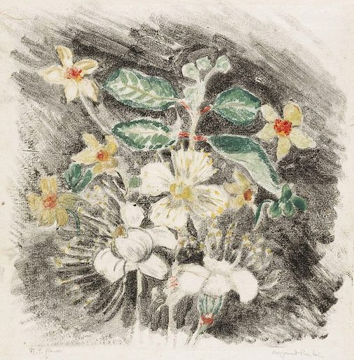 An image of Northern Territory  flowers by Margaret Preston