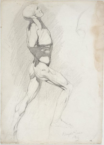 An image of Écorché - study of male figure by Lloyd Rees