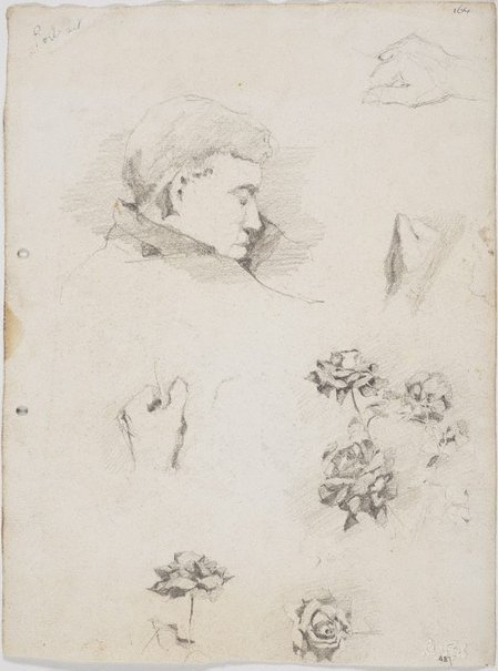 An image of recto: Merlin's head, Hands and Roses verso: Father reading and Self portraits by Lloyd Rees