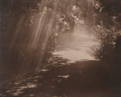 An image of Untitled (Pathway through gardens with light rays) by Norman C Deck